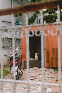 Thao Dien, Ho Chi Minh City, July 1
